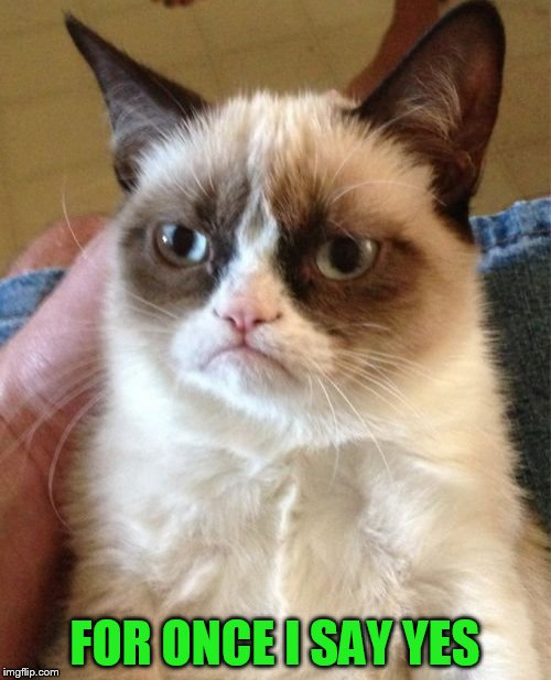 Grumpy Cat Meme | FOR ONCE I SAY YES | image tagged in memes,grumpy cat | made w/ Imgflip meme maker
