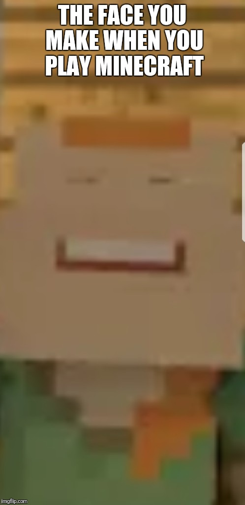 THE FACE YOU MAKE WHEN YOU PLAY MINECRAFT | image tagged in minecraft meme | made w/ Imgflip meme maker