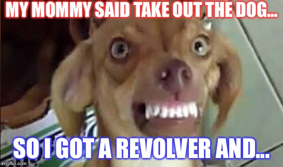 Abuse. | MY MOMMY SAID TAKE OUT THE DOG... SO I GOT A REVOLVER AND... | image tagged in animals,comedy,memes,funny,2018,asdf | made w/ Imgflip meme maker