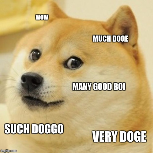 Doge Meme | wow MUCH DOGE MANY GOOD BOI SUCH DOGGO VERY DOGE | image tagged in memes,doge | made w/ Imgflip meme maker