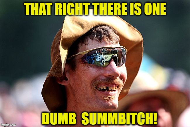 redneck | THAT RIGHT THERE IS ONE DUMB  SUMMB**CH! | image tagged in redneck | made w/ Imgflip meme maker