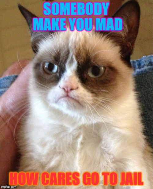 Grumpy Cat Meme | SOMEBODY MAKE YOU MAD HOW CARES GO TO JAIL | image tagged in memes,grumpy cat | made w/ Imgflip meme maker