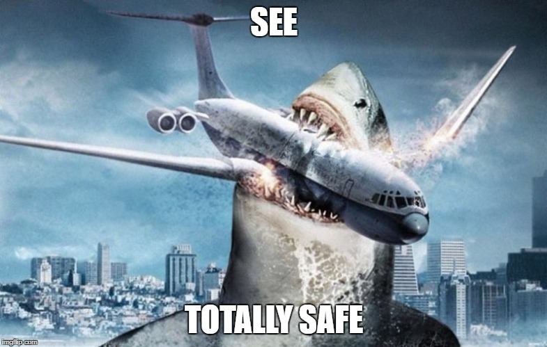 this flight is totally safe | SEE TOTALLY SAFE | image tagged in megalodon | made w/ Imgflip meme maker