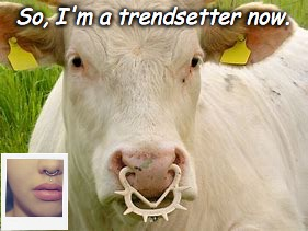 Imitating Cows  | So, I'm a trendsetter now. | image tagged in cows,fashion,girls,girls be like,imitation,trends | made w/ Imgflip meme maker