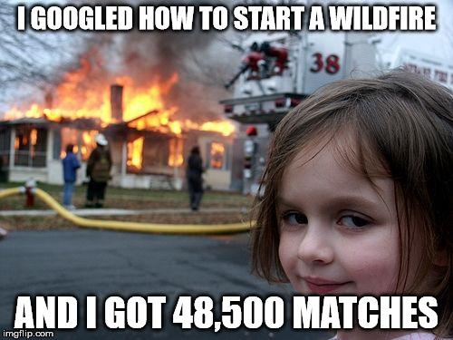 Disaster Girl Meme | I GOOGLED HOW TO START A WILDFIRE AND I GOT 48,500 MATCHES | image tagged in memes,disaster girl | made w/ Imgflip meme maker