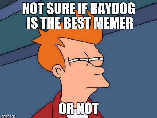 Futurama Fry Meme | NOT SURE IF RAYDOG IS THE BEST MEMER OR NOT | image tagged in memes,futurama fry | made w/ Imgflip meme maker