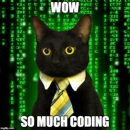 WOW SO MUCH CODING | image tagged in business cat matrix | made w/ Imgflip meme maker