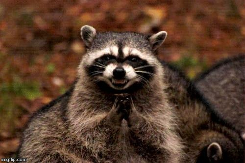 Evil Plotting Raccoon Meme | image tagged in memes,evil plotting raccoon | made w/ Imgflip meme maker