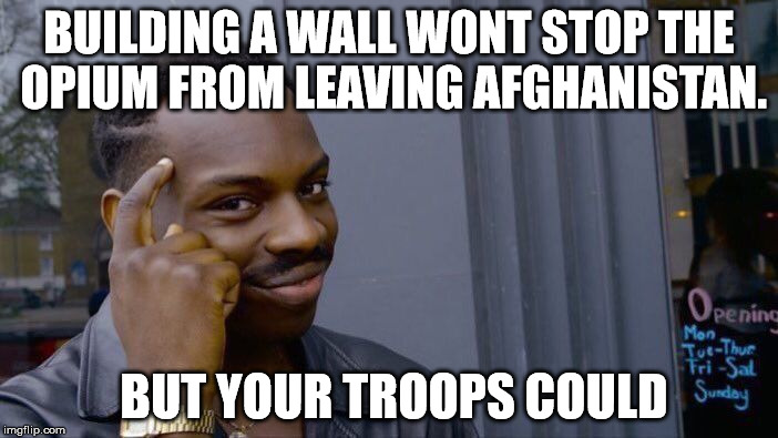 Roll Safe Think About It Meme | BUILDING A WALL WONT STOP THE OPIUM FROM LEAVING AFGHANISTAN. BUT YOUR TROOPS COULD | image tagged in memes,roll safe think about it | made w/ Imgflip meme maker