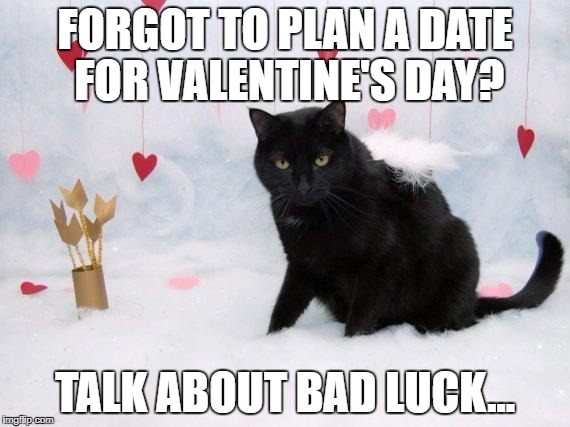 FORGOT TO PLAN A DATE FOR VALENTINE'S DAY? TALK ABOUT BAD LUCK... | image tagged in friday 13th and valentines day cat | made w/ Imgflip meme maker