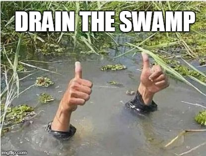 Swamp | DRAIN THE SWAMP | image tagged in drain the swamp | made w/ Imgflip meme maker