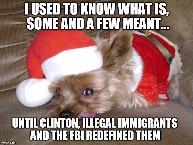 Lies that Dems fed us | I USED TO KNOW WHAT IS, SOME AND A FEW MEANT... UNTIL CLINTON, ILLEGAL IMMIGRANTS AND THE FBI REDEFINED THEM | image tagged in memes,democrat spin,obstruction of justice | made w/ Imgflip meme maker