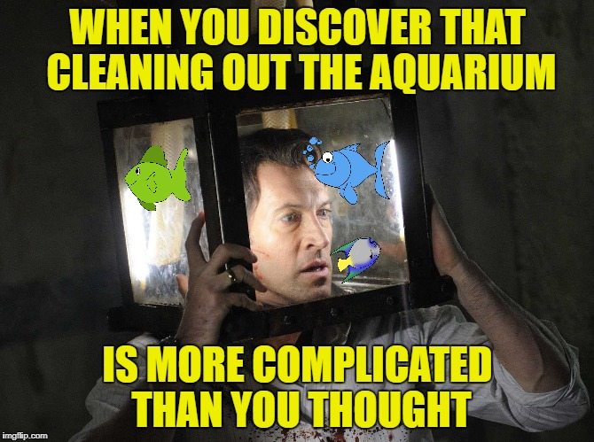Salt-water fish | WHEN YOU DISCOVER THAT CLEANING OUT THE AQUARIUM IS MORE COMPLICATED THAN YOU THOUGHT | image tagged in saw,funny memes,fish | made w/ Imgflip meme maker