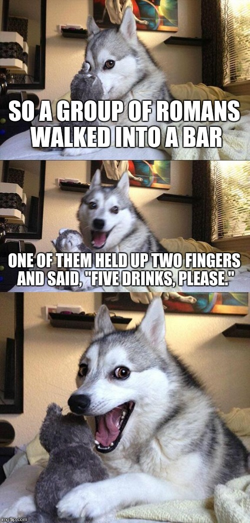 "Bad Pun Dog Meme | SO A GROUP OF ROMANS WALKED INTO A BAR ONE OF THEM HELD UP TWO FINGERS AND SAID, ""FIVE DRINKS, PLEASE."" 
