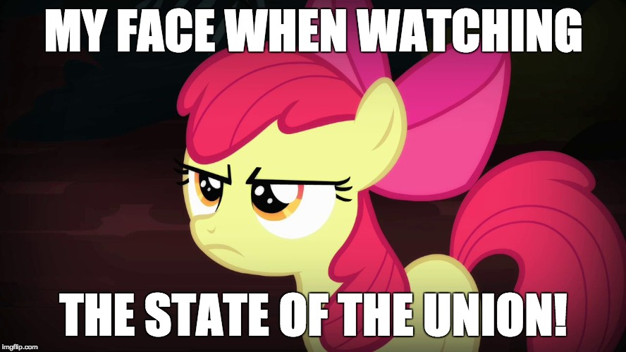 This is going to be fun! | MY FACE WHEN WATCHING THE STATE OF THE UNION! | image tagged in angry applebloom,memes,state of the union | made w/ Imgflip meme maker