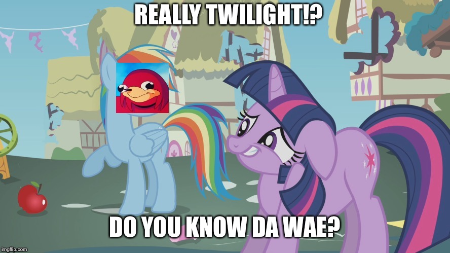 Do you know da wae | REALLY TWILIGHT!? DO YOU KNOW DA WAE? | image tagged in really twilight,do you know da wae,ugandan knuckles,twilight sparkle,rainbow dash,memes | made w/ Imgflip meme maker