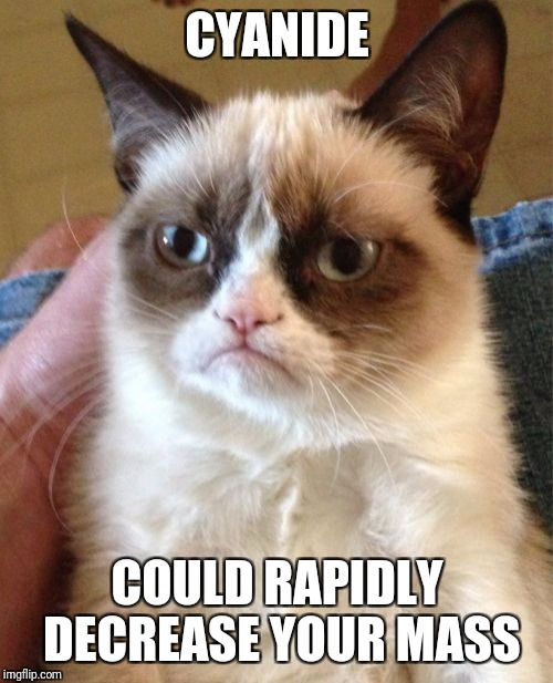 Grumpy Cat Meme | CYANIDE COULD RAPIDLY DECREASE YOUR MASS | image tagged in memes,grumpy cat | made w/ Imgflip meme maker