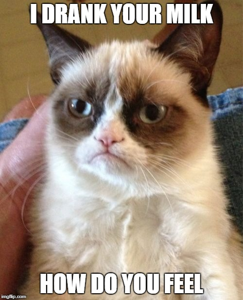 Grumpy Cat Meme | I DRANK YOUR MILK HOW DO YOU FEEL | image tagged in memes,grumpy cat | made w/ Imgflip meme maker