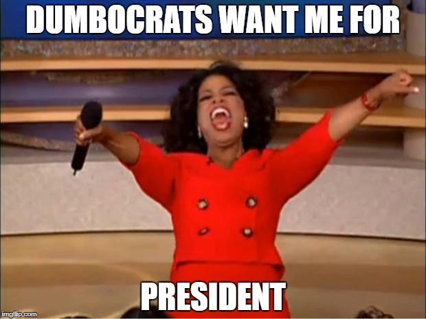 Oprah You Get A Meme | DUMBOCRATS WANT ME FOR PRESIDENT | image tagged in memes,oprah you get a | made w/ Imgflip meme maker
