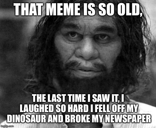 Yo mama might be fat, but that meme is so old... | THAT MEME IS SO OLD, THE LAST TIME I SAW IT, I LAUGHED SO HARD I FELL OFF MY DINOSAUR AND BROKE MY NEWSPAPER | image tagged in geico caveman,old memes,yo mama so fat,funny memes | made w/ Imgflip meme maker