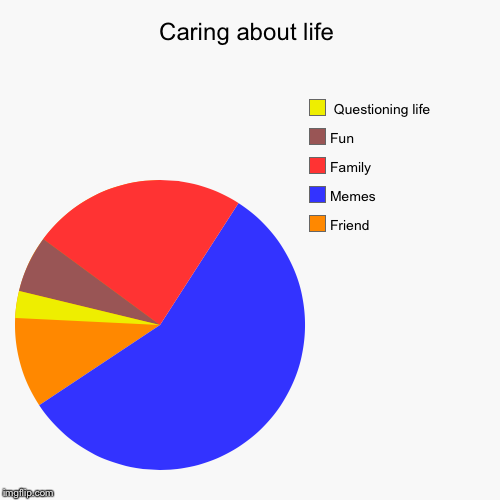 Caring about life | Friend , Memes, Family , Fun,  Questioning life | image tagged in funny,pie charts | made w/ Imgflip pie chart maker