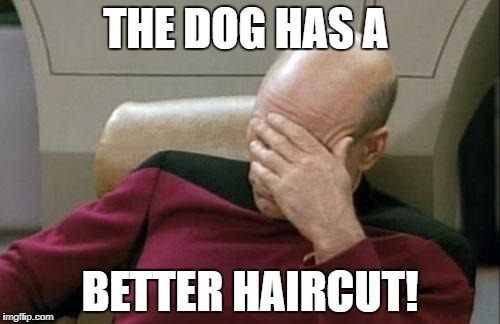 Captain Picard Facepalm Meme | THE DOG HAS A BETTER HAIRCUT! | image tagged in memes,captain picard facepalm | made w/ Imgflip meme maker