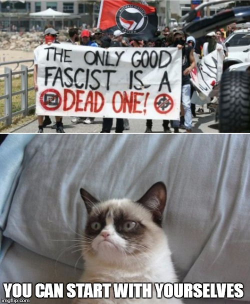 YOU CAN START WITH YOURSELVES | image tagged in grumpy cat vs antifa | made w/ Imgflip meme maker