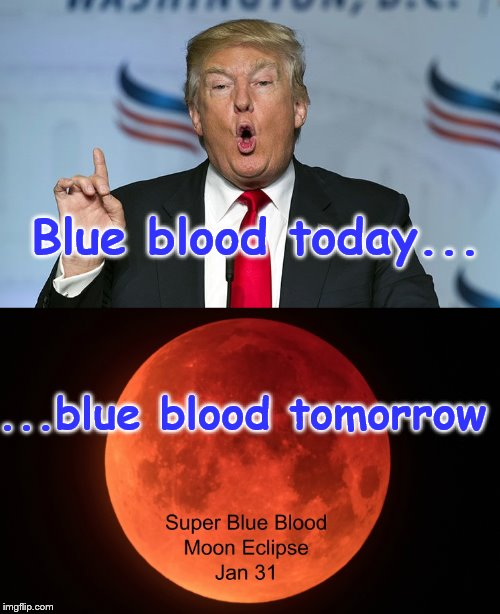 Life goes on | Blue blood today... ...blue blood tomorrow | image tagged in smile | made w/ Imgflip meme maker