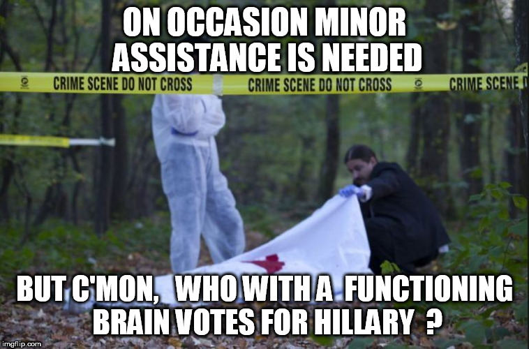 ON OCCASION MINOR ASSISTANCE IS NEEDED BUT C'MON,   WHO WITH A  FUNCTIONING BRAIN VOTES FOR HILLARY  ? | made w/ Imgflip meme maker