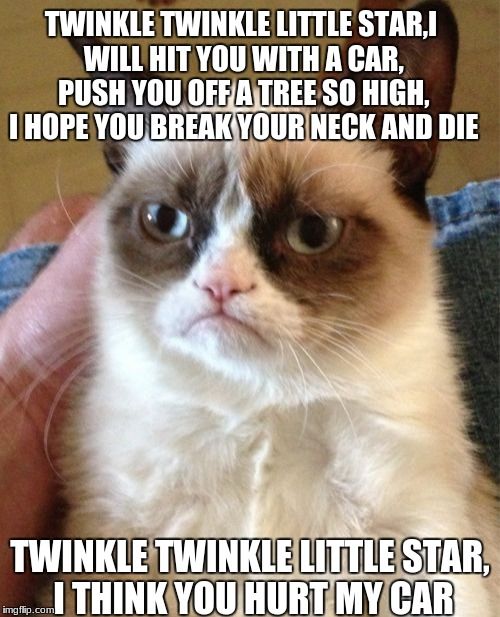 Grumpy Cat Meme | TWINKLE TWINKLE LITTLE STAR,I WILL HIT YOU WITH A CAR, PUSH YOU OFF A TREE SO HIGH, I HOPE YOU BREAK YOUR NECK AND DIE TWINKLE TWINKLE LITTL | image tagged in memes,grumpy cat | made w/ Imgflip meme maker