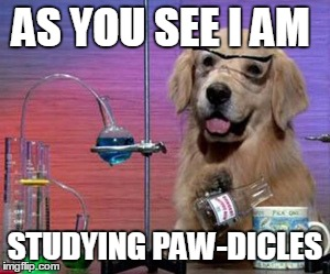 AS YOU SEE I AM STUDYING PAW-DICLES | image tagged in science dog | made w/ Imgflip meme maker