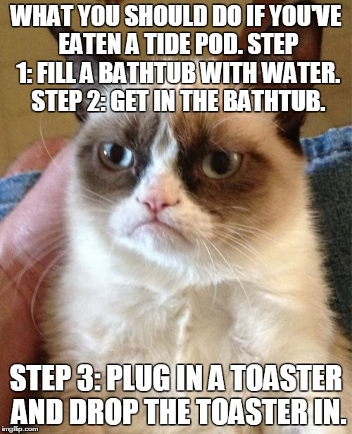 You might as well. (Call it the Tide Pod / toaster challenge.) | WHAT YOU SHOULD DO IF YOU'VE EATEN A TIDE POD. STEP 1: FILL A BATHTUB WITH WATER. STEP 2: GET IN THE BATHTUB. STEP 3: PLUG IN A TOASTER AND  | image tagged in memes,grumpy cat,tide pods,tide pod challenge,stupid people,thin the herd | made w/ Imgflip meme maker