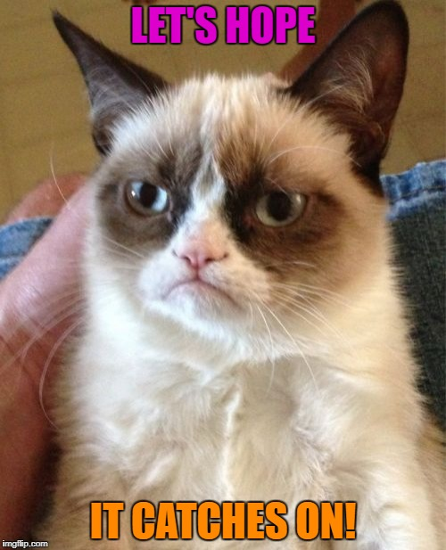 Grumpy Cat Meme | LET'S HOPE IT CATCHES ON! | image tagged in memes,grumpy cat | made w/ Imgflip meme maker