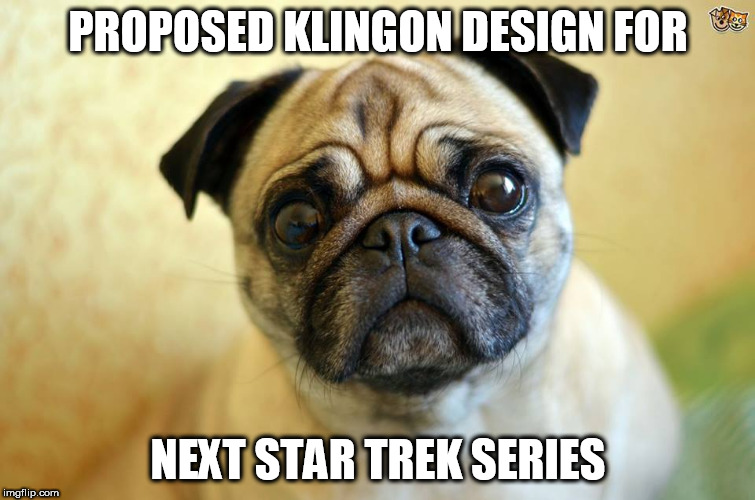 Klingon pug | PROPOSED KLINGON DESIGN FOR NEXT STAR TREK SERIES | image tagged in klingon,star trek,pug | made w/ Imgflip meme maker