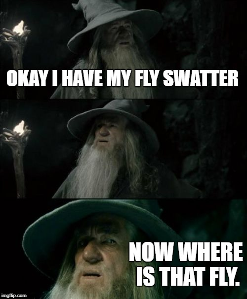 Confused Gandalf Meme | OKAY I HAVE MY FLY SWATTER NOW WHERE IS THAT FLY. | image tagged in memes,confused gandalf | made w/ Imgflip meme maker