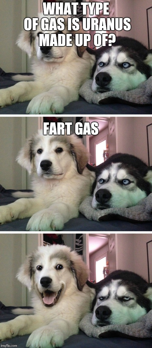 Dogs making Uranus jokes. | WHAT TYPE OF GAS IS URANUS MADE UP OF? FART GAS | image tagged in bad pun dogs,uranus,uranus jokes,dogs | made w/ Imgflip meme maker