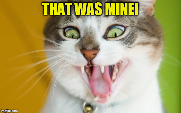 THAT WAS MINE! | made w/ Imgflip meme maker