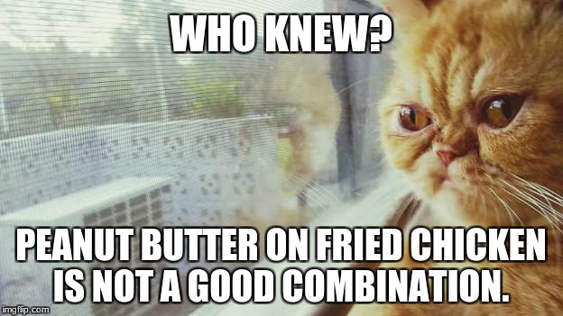 WHO KNEW? PEANUT BUTTER ON FRIED CHICKEN IS NOT A GOOD COMBINATION. | image tagged in who knew | made w/ Imgflip meme maker