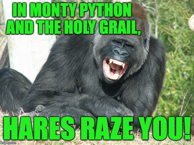 IN MONTY PYTHON AND THE HOLY GRAIL, HARES RAZE YOU! | made w/ Imgflip meme maker