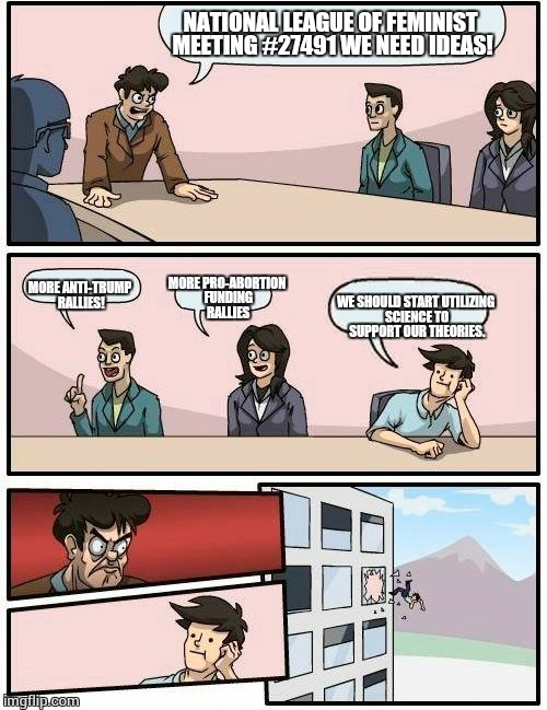 Boardroom Meeting Suggestion Meme | NATIONAL LEAGUE OF FEMINIST MEETING #27491 WE NEED IDEAS! MORE ANTI-TRUMP RALLIES! MORE PRO-ABORTION FUNDING RALLIES WE SHOULD START UTILIZI | image tagged in memes,boardroom meeting suggestion | made w/ Imgflip meme maker