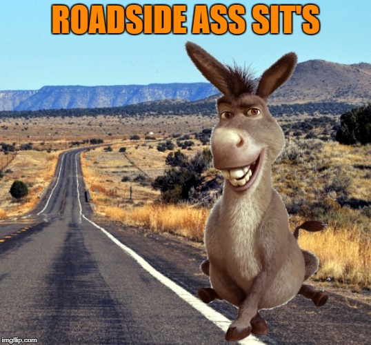 roadside ass sit's | ROADSIDE ASS SIT'S | image tagged in ass | made w/ Imgflip meme maker