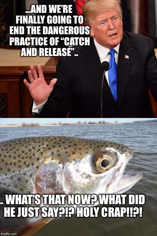 "Potus | ...AND WE'RE FINALLY GOING TO END THE DANGEROUS PRACTICE OF ""CATCH AND RELEASE"".. .. WHAT'S THAT NOW? WHAT DID HE JUST SAY?!? HOLY CRAP!!?! 