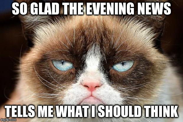 Grumpy Cat Not Amused Meme | SO GLAD THE EVENING NEWS TELLS ME WHAT I SHOULD THINK | image tagged in memes,grumpy cat not amused,grumpy cat | made w/ Imgflip meme maker