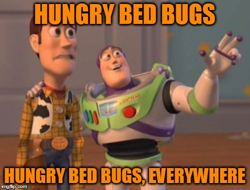 X, X Everywhere Meme | HUNGRY BED BUGS HUNGRY BED BUGS, EVERYWHERE | image tagged in memes,x,x everywhere,x x everywhere | made w/ Imgflip meme maker