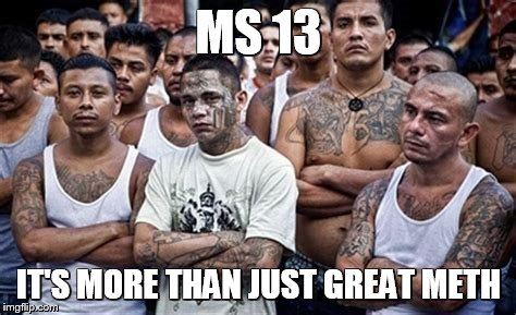 Trump in SOTU Finally Intros MS 13 Gang to Nation | MS 13 IT'S MORE THAN JUST GREAT METH | image tagged in ms13 family pic,memes,trump,state of the union | made w/ Imgflip meme maker
