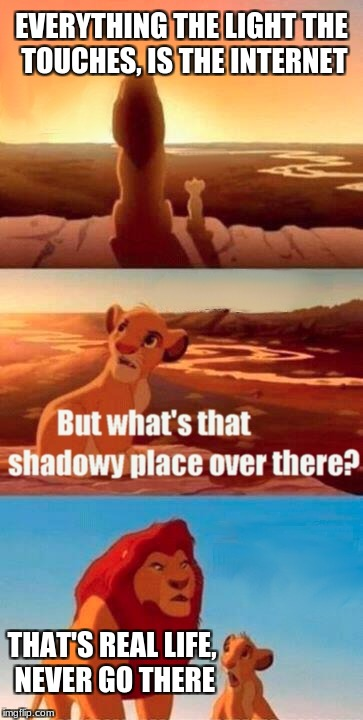 Simba Shadowy Place Meme | EVERYTHING THE LIGHT THE TOUCHES, IS THE INTERNET THAT'S REAL LIFE, NEVER GO THERE | image tagged in memes,simba shadowy place | made w/ Imgflip meme maker