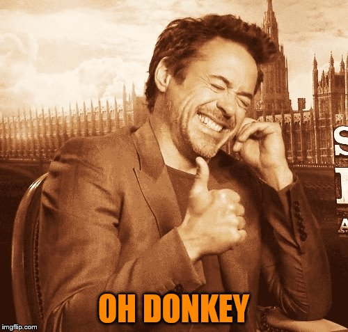 laughing | OH DONKEY | image tagged in laughing | made w/ Imgflip meme maker