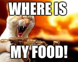 lol | WHERE IS MY FOOD! | image tagged in lol | made w/ Imgflip meme maker