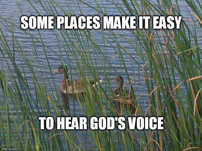 Peace like a river | SOME PLACES MAKE IT EASY TO HEAR GOD'S VOICE | image tagged in peace,nature,ducks,inspirational memes,faith | made w/ Imgflip meme maker