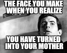 It can happen to anyone | THE FACE YOU MAKE WHEN YOU REALIZE YOU HAVE TURNED INTO YOUR MOTHER | image tagged in norm,mother,first world problems | made w/ Imgflip meme maker